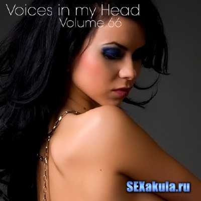 Voices in my Head Volume 66 (2013)